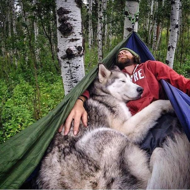 camping_with_dog_02