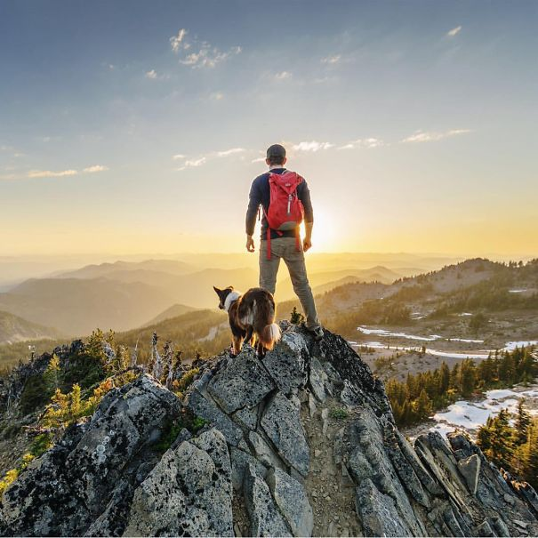 camping_with_dog_06