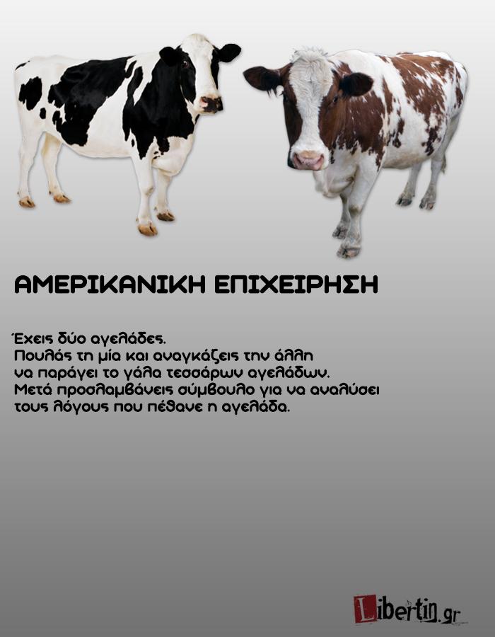 cowwsssss12