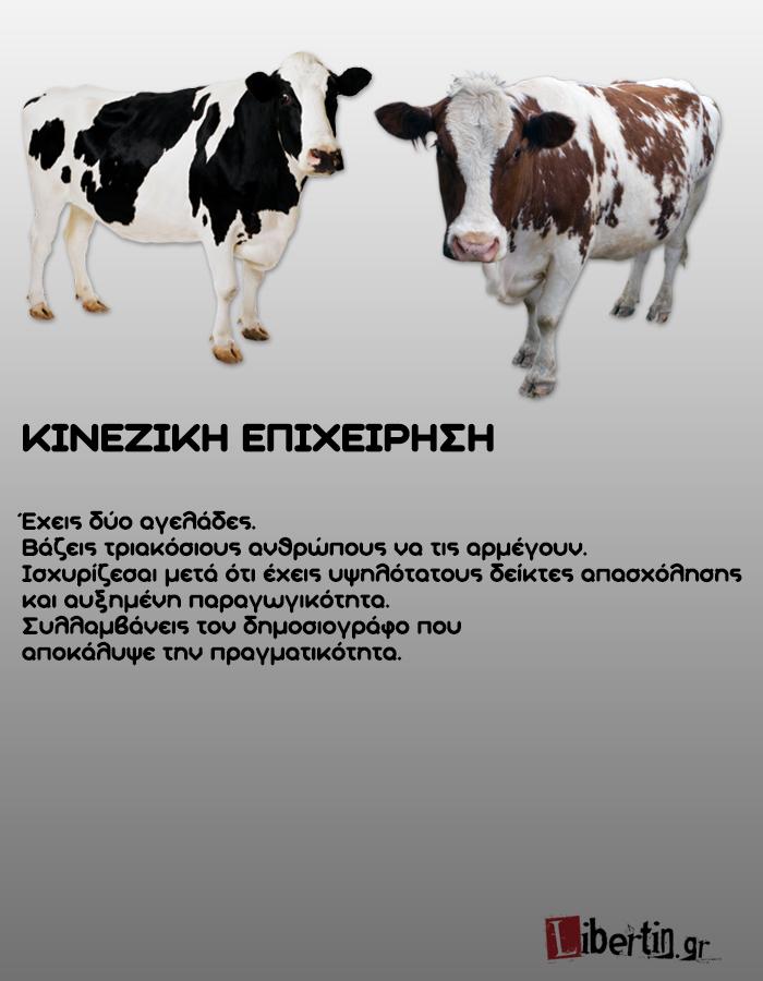 cowwsssss14