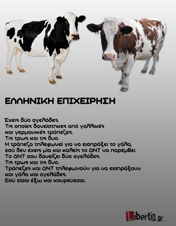 cowwsssss17