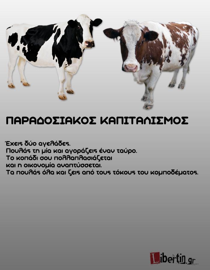 cowwsssss4