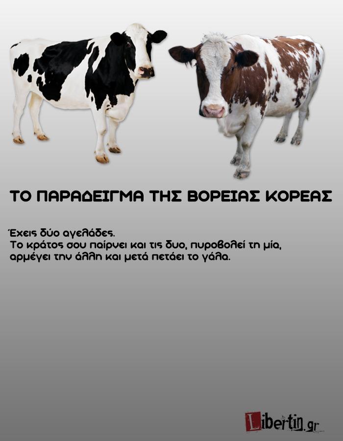 cowwsssss6
