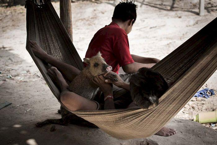 awa_amazon_tribe_breastfeeds_animals_01