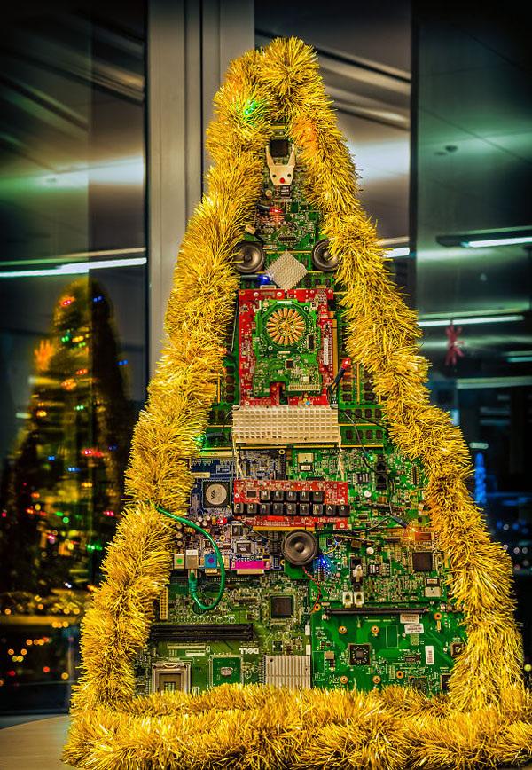 no-christmas-tree-no-worries-photos-32
