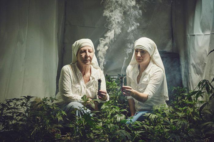 nuns_grow_marjuana_11