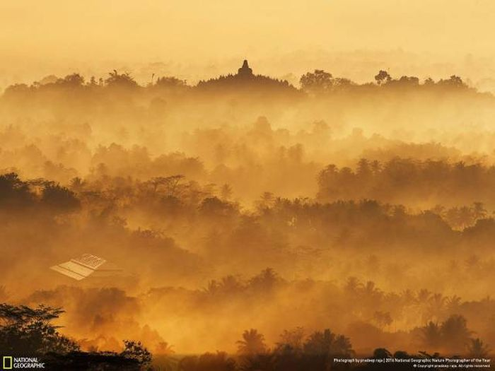 national_geographic_nature_37
